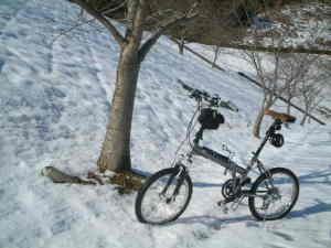 雪とWESTWOOD