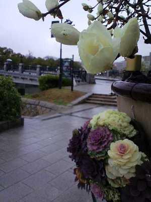 今日の広島