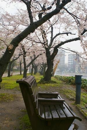 広島 元安川の霧