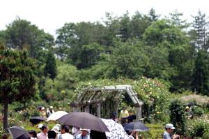 Wakunaga-garden