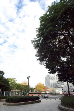 今朝の平和公園
