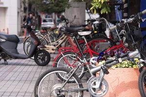 自転車散歩2