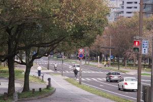自転車散歩5