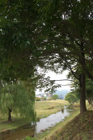せせらぎ公園2