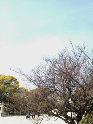 空とお昼と公園と