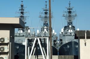 ローズと護衛艦