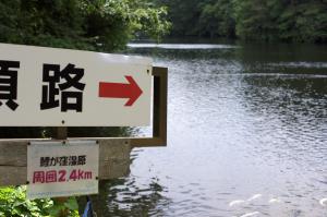 新見市・鯉が窪湿原