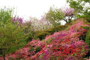 土曜日の植物公園