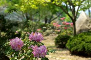 花みどり公園