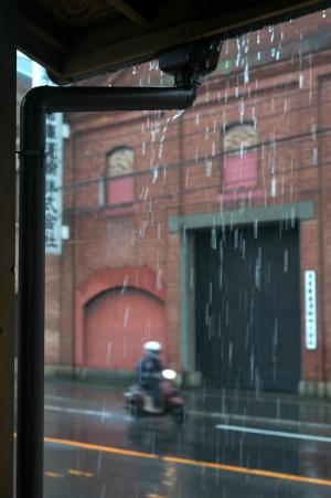"""雨の""""アレイからすこじま"""""""