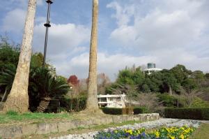 年末の植物公園