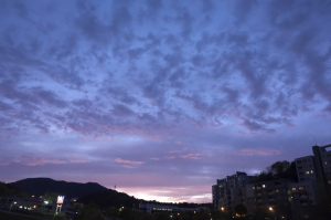 落日と・・・