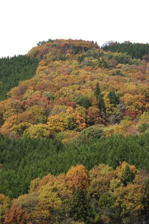 秋色プロローグ