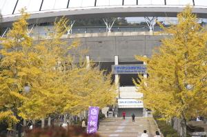 続・広域公園の秋色