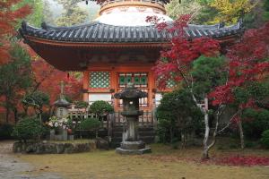 続・紅葉の三滝寺