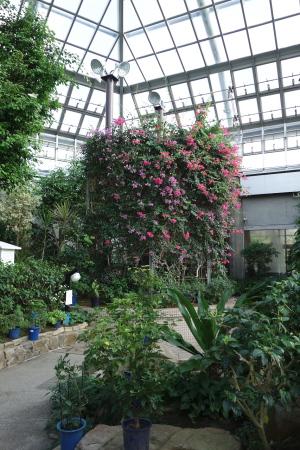 森林公園昆虫館