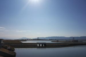 岩国・今津川河口