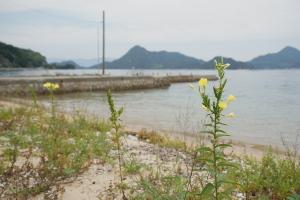 江田島再発見