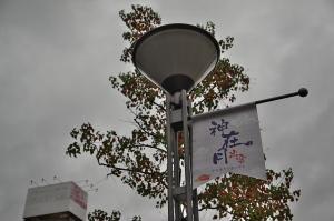 出雲駐屯地創立64周年記念行事