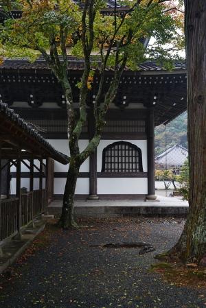 続・雨の佛通寺