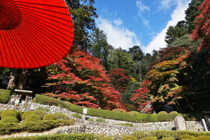 吉水園紅葉