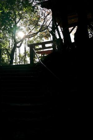 二葉の里歴史の散歩道
