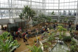 新装・植物公園大温室