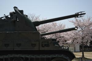 海田市駐屯地の桜並木一般公開