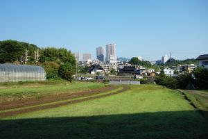 亀と太田川
