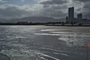 八幡川河口