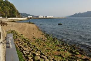 坂町・小屋浦海岸