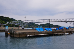 とびしま海道・豊浜釣果