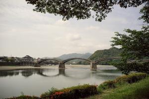 錦帯橋花菖蒲まつり