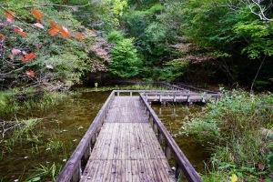 おおの自然観察の森