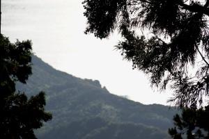 弘法寺の光芒