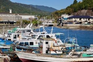 仁方港と広の海岸