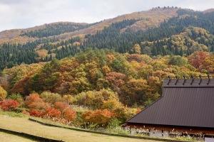 釣果と秋の風景