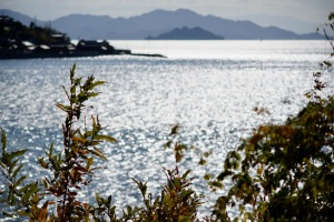 島のスナップ-3
