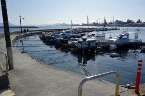 港のスナップ