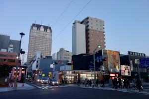 中央通りのハクモクレン