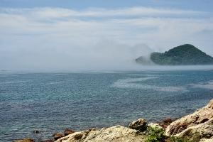 霧の海風景