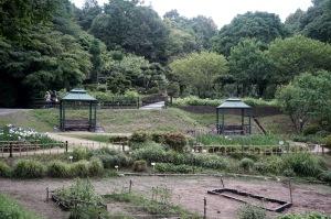 日曜日の植物公園