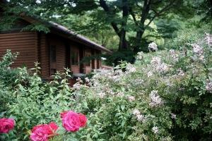 植物公園M-ROKKOR