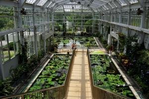 RX1だけで植物公園