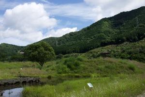 RX1のおすすめ風景