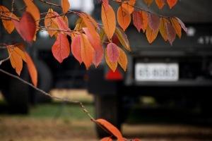 秋の陸自イベント
