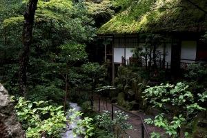 雨上がりの三瀧寺-2