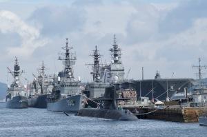 セミと軍艦