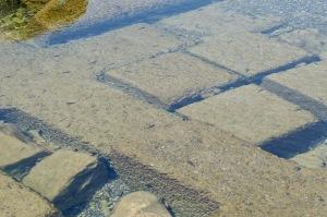 岩国市楠町の堤防