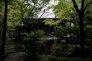 梅雨明け前の三瀧寺